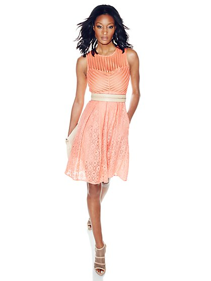 Eyelet Flare Dress - Petite  - New York & Company