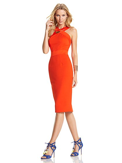 Knit Bodycon Halter Dress  - New York & Company