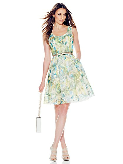 Multicolor Mesh Flare Dress - Petite  - New York & Company