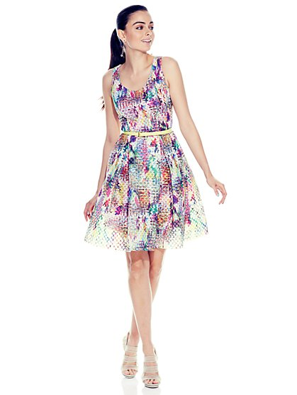 Multicolor Mesh Flare Dress - New York & Company