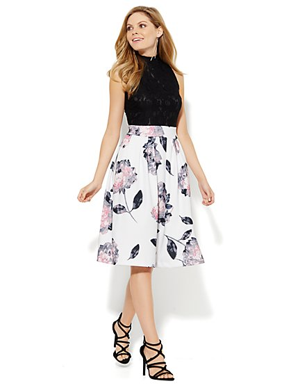 Scuba Floral & Lace Flare Dress - Petite - New York & Company