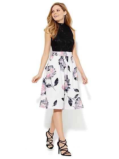 Scuba Floral & Lace Flare Dress - Petite - New York & Company