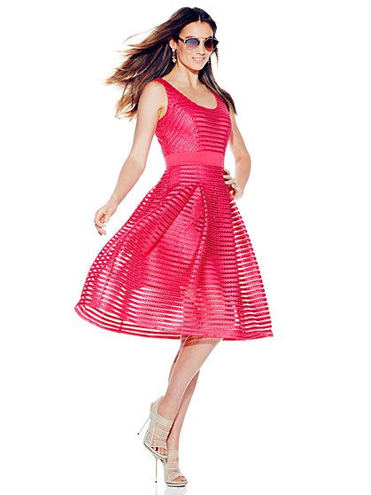 Striped-Mesh Flare Dress - Solid  - New York & Company