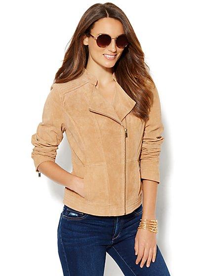Suede Moto Jacket - New York & Company