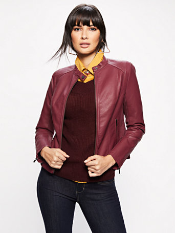 Knit Inset Banded Collar Moto Jacket by New York & Company